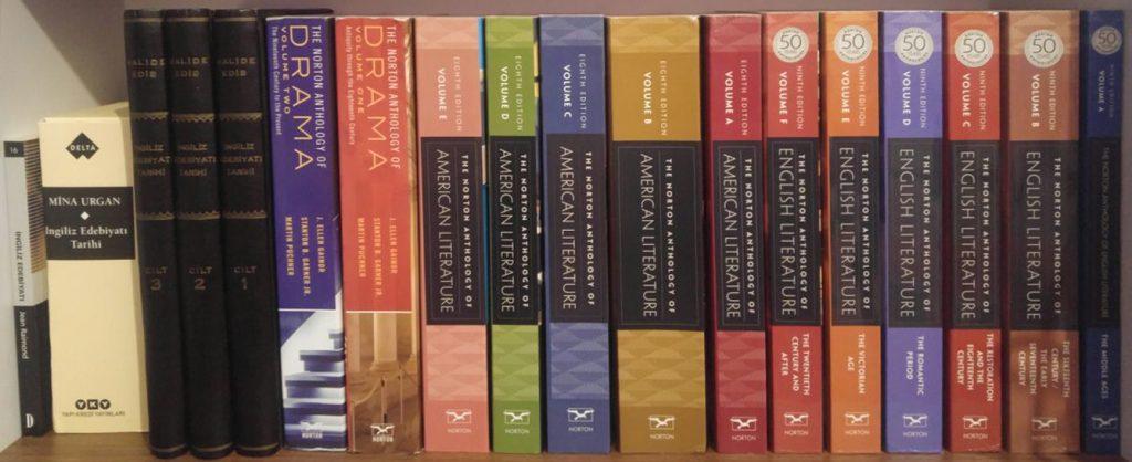 İngiliz Edebiyatı Hakkında